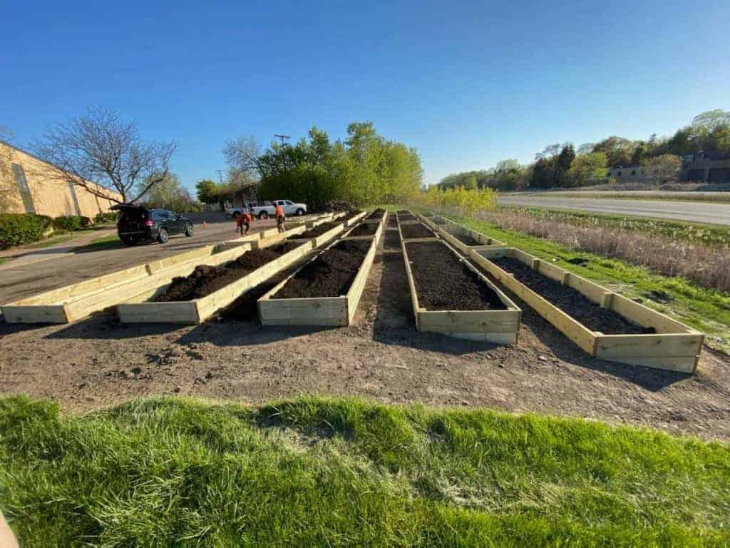 Grow & Give: The Sheridan Story's summer produce garden