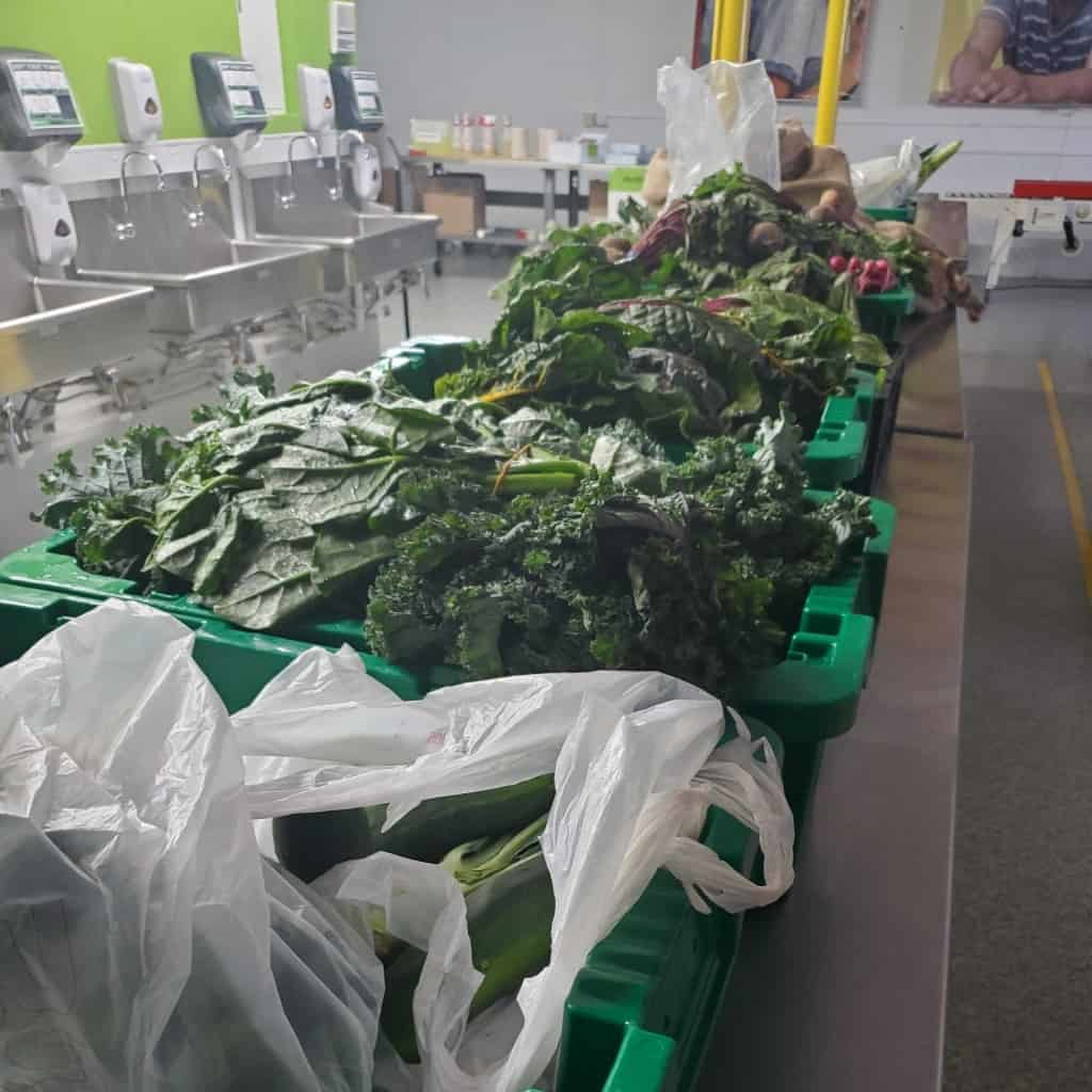Sorted produce donations